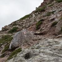 Abstieg zur Schlüterhütte