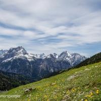 Panoramawiese Karwendel